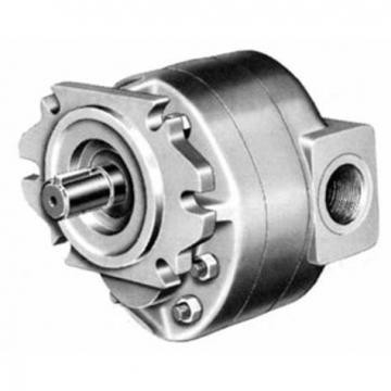 Parker/Commercial/Permco Gear Pump Gear Motor (P50/P51)