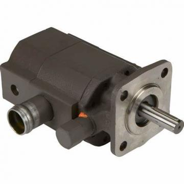 EH Hydraulic Vane Pump Main Pump And Spare Parts Oil Seal And Blade, 200 Bar High Pressure Pump, Pv2r Yuken Pump Cartridge Kit
