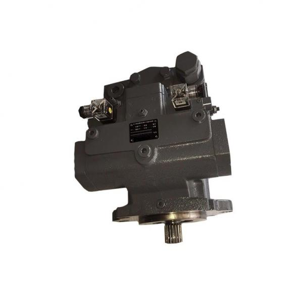 China Helm Tower Brand A10V Series Hydraulic Pumps #1 image