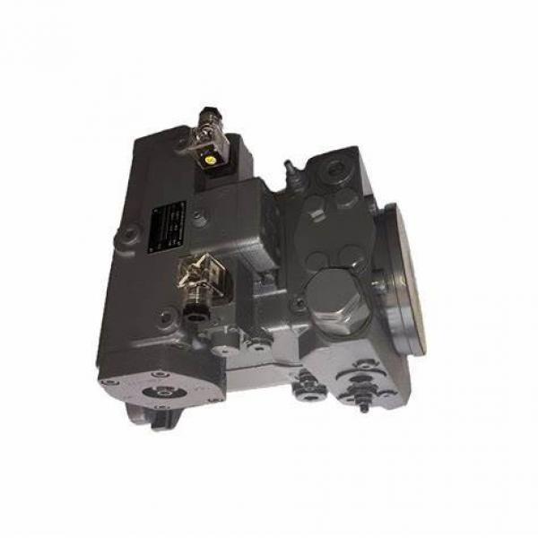 Sauer/ Rexroth/Kawasaki/Linde PV21/PV22/PV23 /A4V/A10V/K3V112/K3V63 Hydraulic Piston Pump Motor #1 image