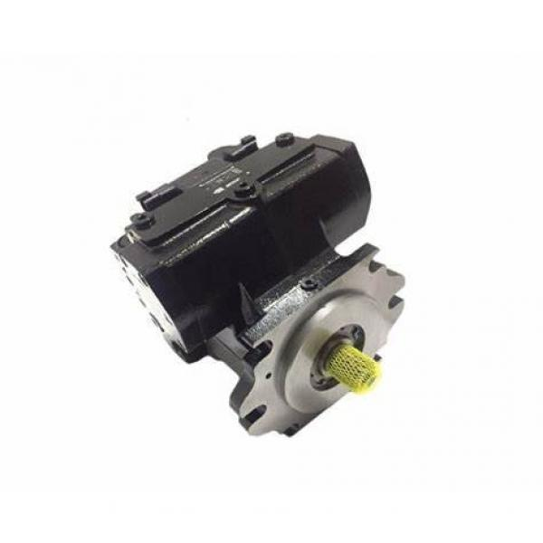 Rexroth A4VG125 Hydraulic Piston Pump Spare Parts (Repaire Kit/Rotary Group) #1 image