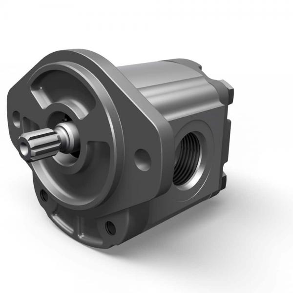 Parker Pk100 Pmt14/18 Lp80/2105/2060 Pvt38 Sh5V/131 P2/P3-60/75/105/145 Hydraulic Pump ... #1 image