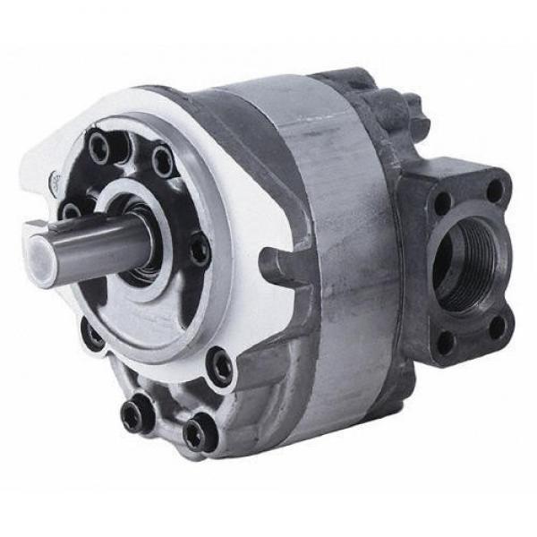 Hydraulic Parker PV Pump #1 image